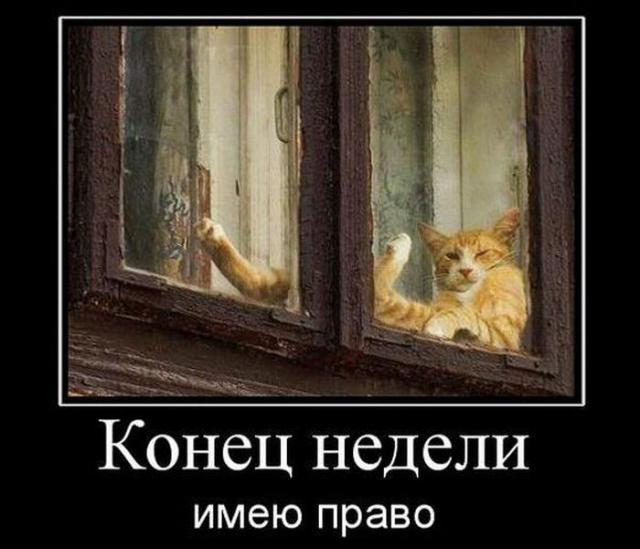 post-260-1279730188,1021_thumb.jpg