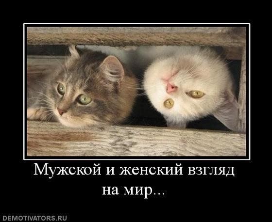 post-167-010005600 1283600933_thumb.jpg