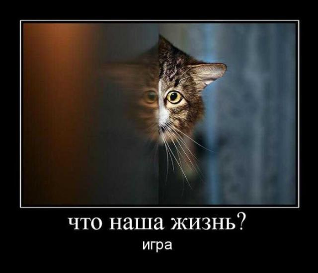 post-167-024866600 1284742223_thumb.jpg