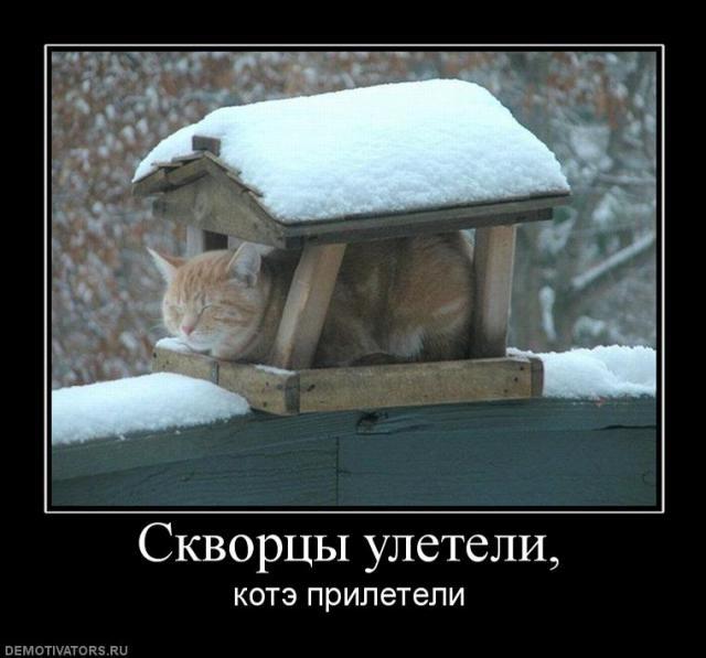 post-167-056958000 1283600928_thumb.jpg