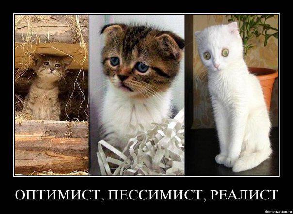post-167-063290300 1284320705_thumb.jpg