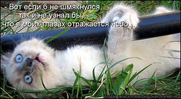 post-167-071934100 1284741761_thumb.jpg