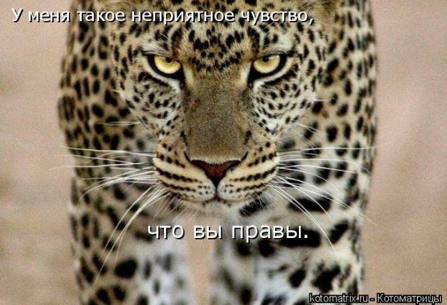 post-20-082109700 1284064433_thumb.jpg