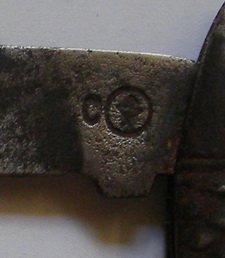 IMGP3652.JPG