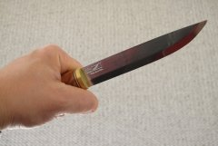 Mora fish knife. (i)