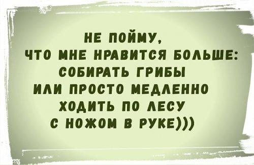 IMG_20181124_105809.jpg