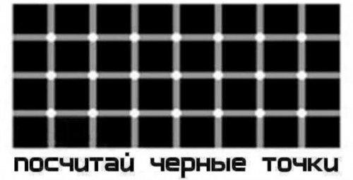 13828093.jpg