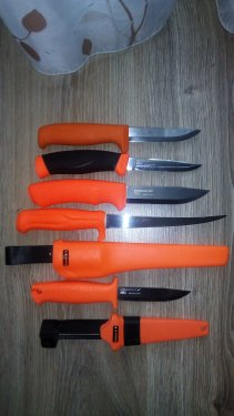 Oran.thumb.jpg.31550cd362907e8e1c0eedcf778eb3d3.jpg