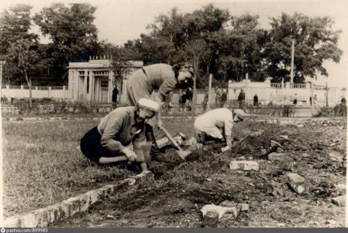 Благоустройство сквера 1942.jpg