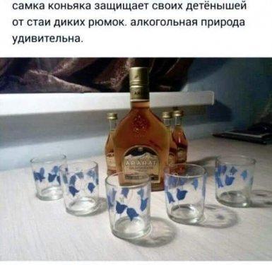 FB_IMG_1619109459964.jpg
