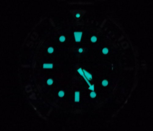 P3290034.thumb.JPG.48ce110ddffdc7cbc4a8ceaeca7e515a.JPG
