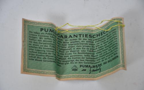pumas6.png