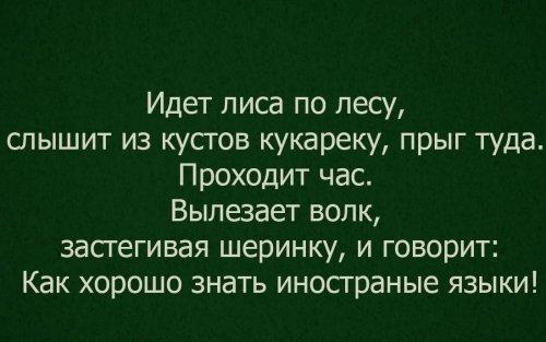 1429814477_.thumb.jpg.535ab8616a1eec0d53f1bd6e6a1e4c83.jpg