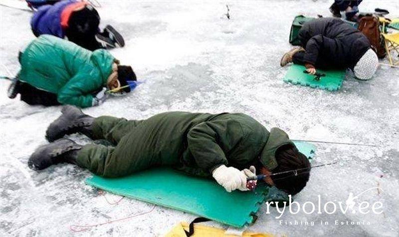 рыбалка в северной корее видео