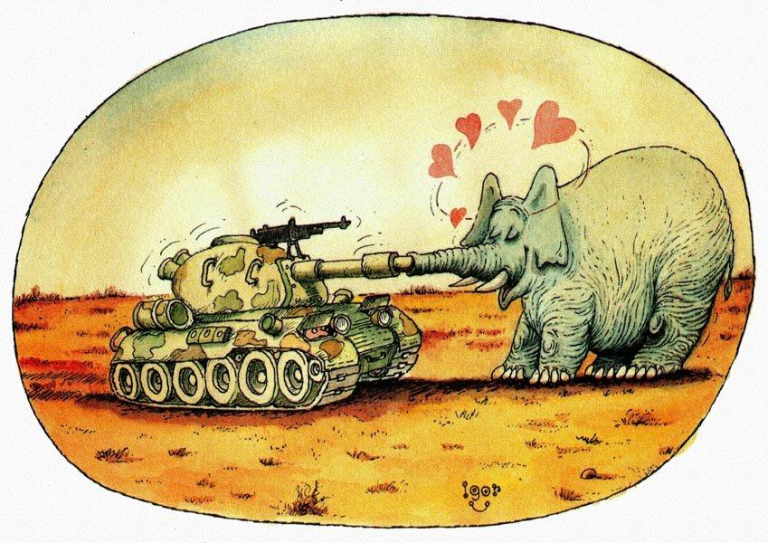 Молодоженов картинках, картинки прикольные танки