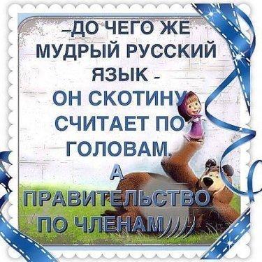 post-5960-0-52551600-1445200128.jpg