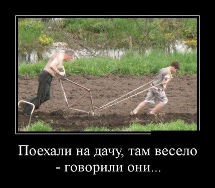 post-9478-0-30940000-1405451024_thumb.jpg
